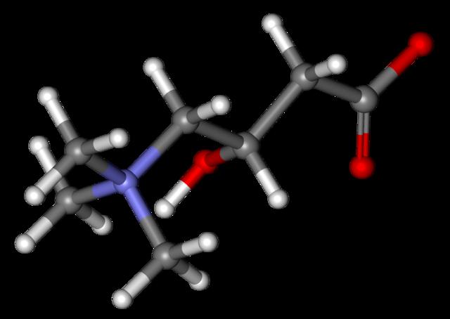 Levocarnitina para adelgazar :: Efectos de las tabletas de