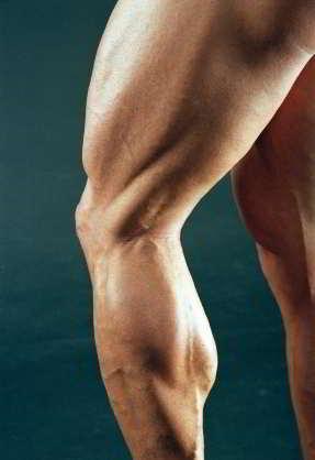 Ejercicios-para-piernas-hombres