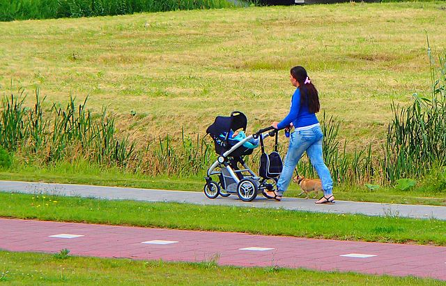 Walking_female_with_stroller_and_dogs