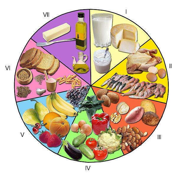 Fibra, aloe, comidas saludables para adelgazar rapido ocasionado ningn