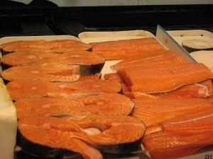 salmon 300x225